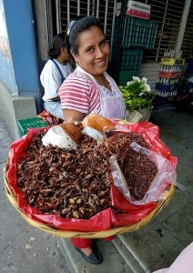 chapulines-seller-2-b
